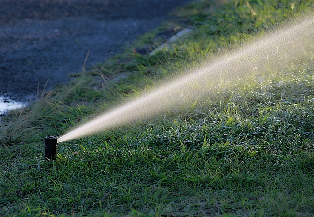 Irrigation sprinkler head watering turf