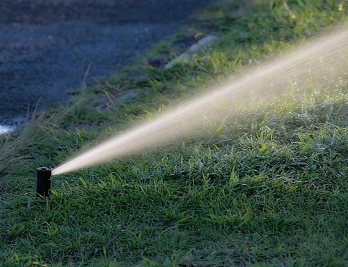 What to Look For in an Irrigation Inspection?
