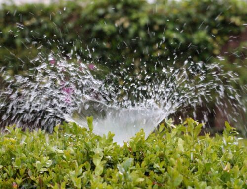Smart Controllers and Efficient Irrigation Systems