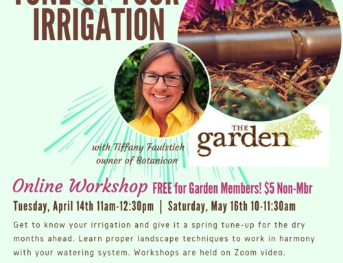 Spring Irrigation Tune-Up